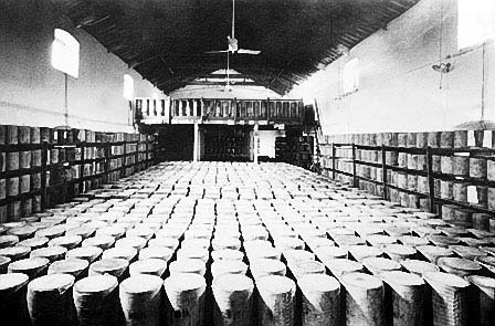 Cheese being stored at Crump and Way, Wells.