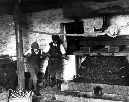 Two men pressing the 'cheese', early twentieth century.